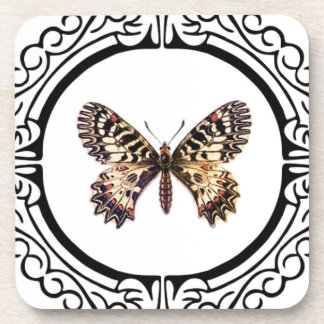 spotted ringed butterfly coaster