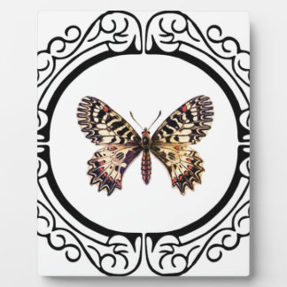 spotted ringed butterfly plaque