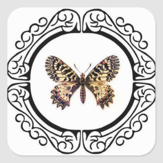 spotted ringed butterfly square sticker