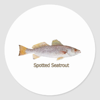 Spotted Seatrout (titled) Round Stickers