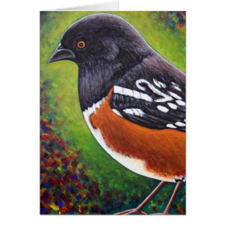Spotted Towhee Card