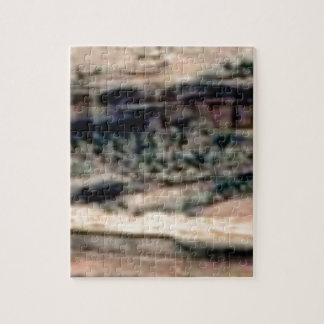 spotted white desert jigsaw puzzle