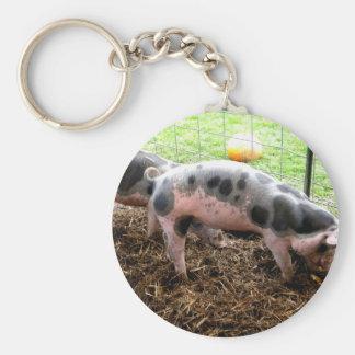 Spotty Piggy Key Chain