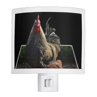 Spotty_Speckled_Rooster,_Popout_Art_Nightlight Nite Lites