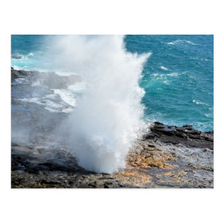 Spouting Horn in Kauai, Hawaii Postcard
