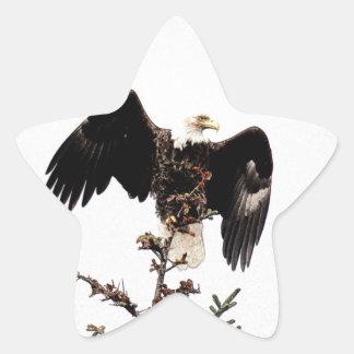 Spread Your Wings Star Sticker