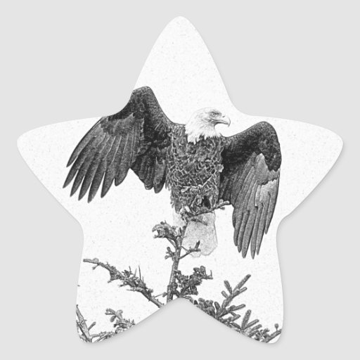 Spread Your Wings Star Stickers