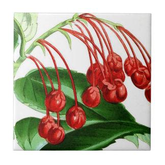 Sprig of red berries, vintage print tile