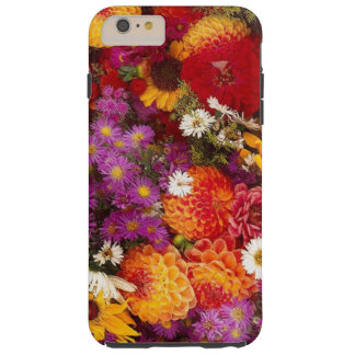 spring2 tough iPhone 6 plus case