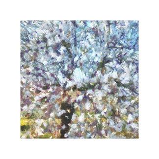 Spring Almond Blossom Canvas Print