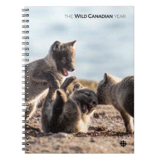 Spring - Arctic Fox Notebooks