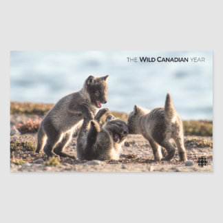 Spring - Arctic Fox Sticker