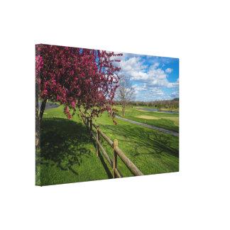 Spring At Rivercut Canvas Print