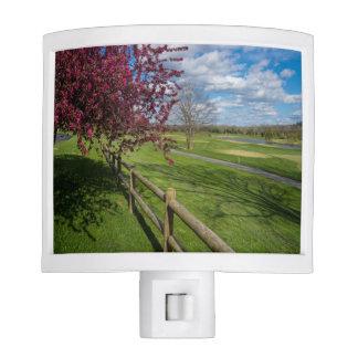 Spring At Rivercut Nite Light