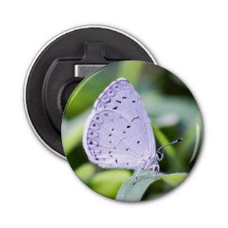 Spring Azure Butterfly Magnet Bottle Opener