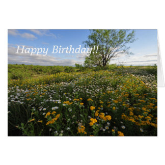 Spring Birthday Greetings Card