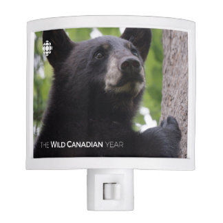 Spring - Black Bear Nite Light