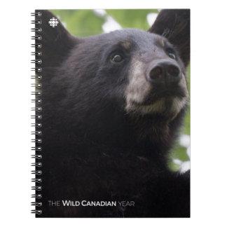 Spring - Black Bear Notebooks