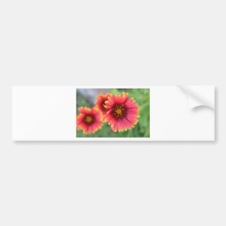 Spring Bloom Pt 2 Bumper Sticker