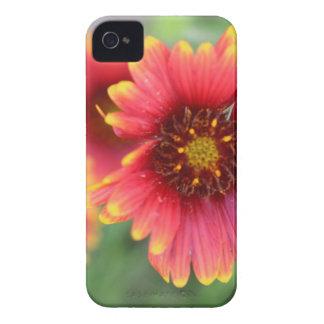 Spring Bloom Pt 2 Case-Mate iPhone 4 Case