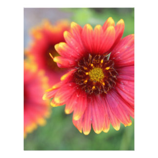 Spring Bloom Pt 2 Letterhead