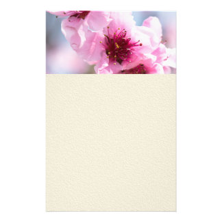 Spring blooming flyer