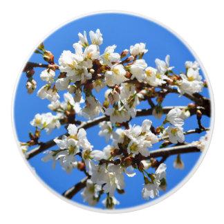 Spring Blossom Ceramic Knob