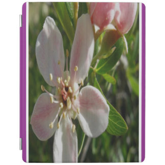 Spring Blossom iPad Cover
