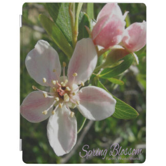 Spring Blossom iPad Cover