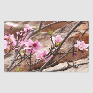 Spring Blossoms on Zion Red Rocks Sticker