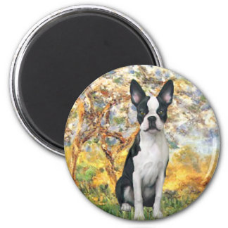 Spring - Boston Terrier #1 Magnet