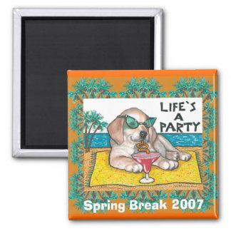 Spring Break 2007 Magnet