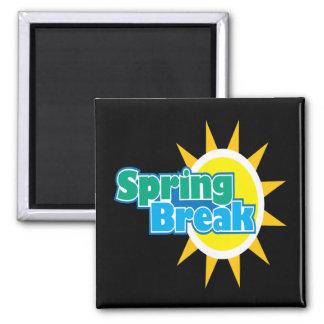 Spring Break 4 Magnet