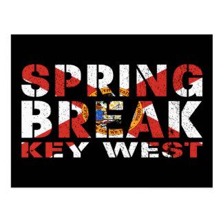 Spring Break Key West Florida Postcard