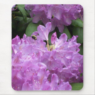 Spring bumble bee rhododendron   mousepad