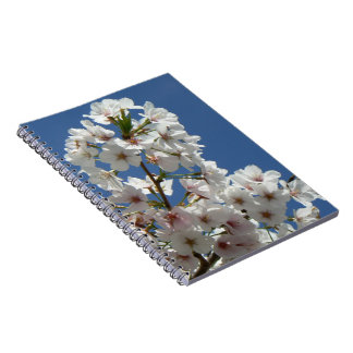 Spring cherry tree blossom spiral notebook