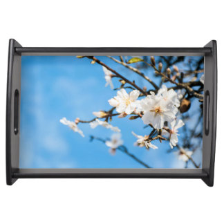 Spring Cherry trees Serving Tray