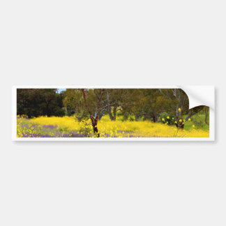 Spring Color Bumper Sticker