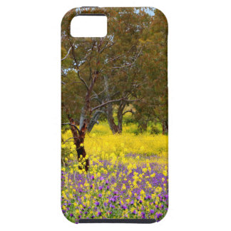 Spring Color Case For The iPhone 5