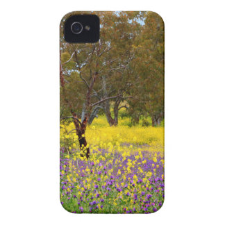 Spring Color iPhone 4 Case-Mate Case