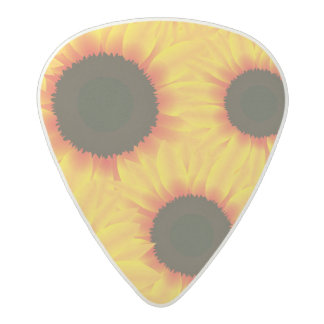 Spring colorful pattern sunfl acetal guitar pick