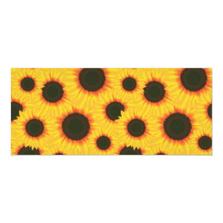 Spring colorful pattern sunflower card