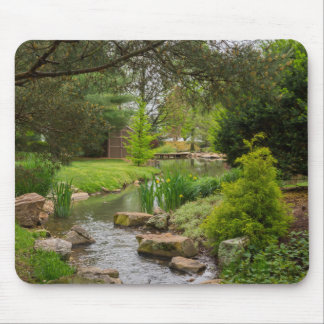 Spring Creek Beauty Mouse Pad