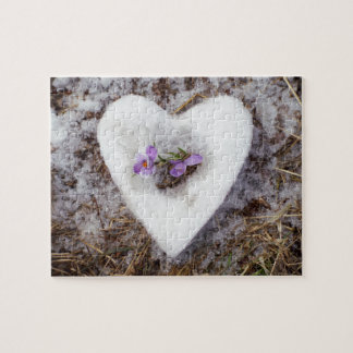 Spring crocus in snow heart photograph jigsaw puzzle