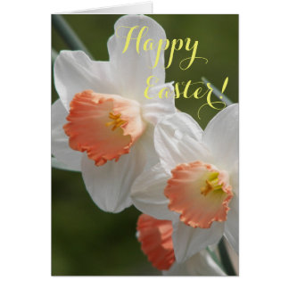 Spring Daffodils Photo Easter Card