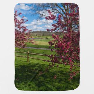 Spring Day In Rivercut Baby Blanket