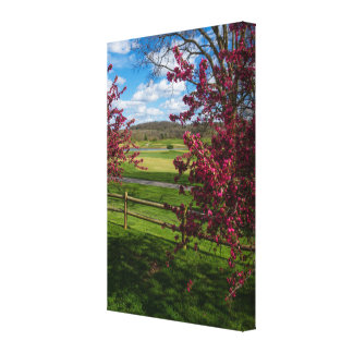 Spring Day In Rivercut Canvas Print
