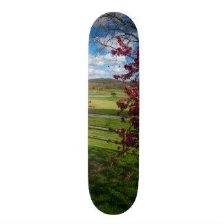 Spring Day In Rivercut Custom Skateboard