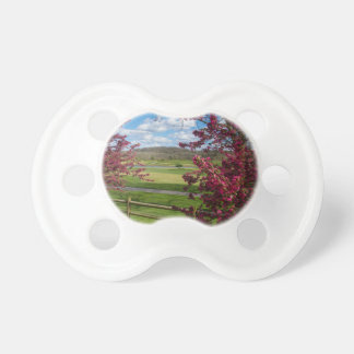 Spring Day In Rivercut Pacifier
