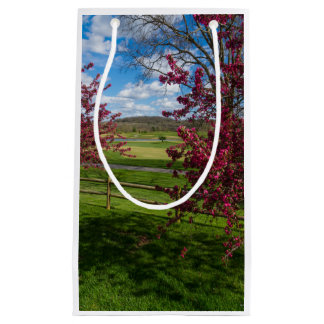 Spring Day In Rivercut Small Gift Bag